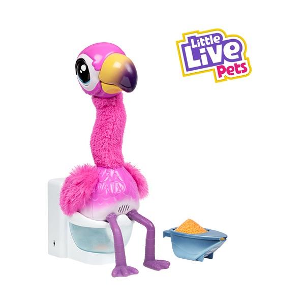 Potyi a Flamingo