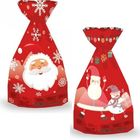 Pungă cadou Moş Crăciun - diferite