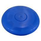 Frisbee albastru din plastic - 27 cm