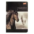 Inspiration lovas A5-ös vonalas 2. osztályos füzet - fekete 16-32