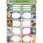 T-Creativ 10 darabos füzetcímke - cicák