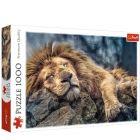 Alvó oroszlán 1000 darabos puzzle