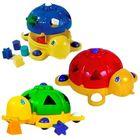 Ţestoasa magică - diferite culori