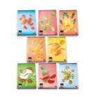 Pigna: caiet cu pătrăţele cu model fructe - A4, diferite