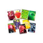 Pigna: gyümölcsmintás négyzetrácsos füzet - A5, többféle