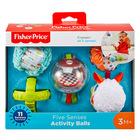 Jucărie bebeluşi Pachet de mingi pentru cinci simţuri senzoriale, Fisher-Price