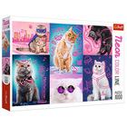 Trefl: Neon Color Line Pisicii minunați - puzzle cu 1000 de piese