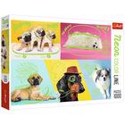 Trefl: Neon Color Line Szuper kutyák 1000 db-os puzzle