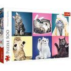 Trefl: Kiscicák 500 darabos puzzle