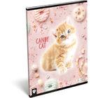 KIS BAGOLY: Candy Cat A4 vonalas füzet
