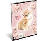 KIS BAGOLY: Candy Cat A4 négyzetrácsos füzet