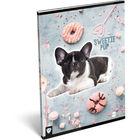 KIS BAGOLY: Sweetie dog A4 négyzetrácsos füzet