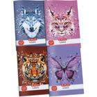 x.book: Wild Animals négyzetrácsos füzet 27-32 - A5, többféle