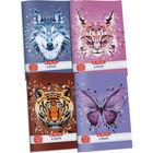 x.book: Wild Animals Caiet cu linii pentru clasa I-a 14-32 - A5, diferite