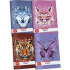 x.book: Wild Animals Caiet notițe pentru teme A5/44 coli - în lb. maghiară
