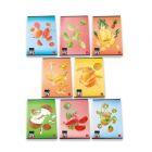 Gyümölcs mintás, A4-es, 42 lapos sima füzet - többféle