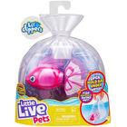 Little Live Pets: Bellariva, peștișorul care înoată