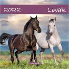 Falinaptár lemez: Lovak - nagy