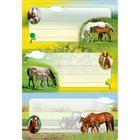 Herma: Etichete caiete cu model cai