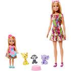 Barbie The Lost Birthday - Set de joacă Barbie și Chelsea