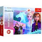 Frozen 2: Curajul surorilor - puzzle cu 30 de piese