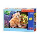 Castorland: Vörös kiscica 180 darabos puzzle