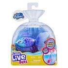 Little Live Pets: Furtail úszkáló halacska - 2. széria, 11 cm