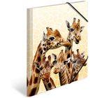 Herma: Familie de girafă - mapă polipropilenă cu elastic
