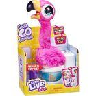 Little Live Pets: Potyi a Flamingó - CSOMAGOLÁSSÉRÜLT