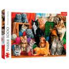 Trefl: Întâlnirea pisicilor - puzzle cu 1000 piese