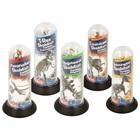 Magnoidz: Schelete de dinozaur 3D - diferite