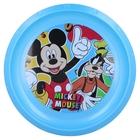 Mickey egér: Mintás, műanyag lapostányér