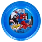 Spider-Man: Farfurie adâncă din plastic