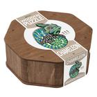 Ewa Wood: Kaméleon formájú fa puzzle, különleges elemekkel - 111 darabos