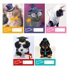 Funny animals: Caiet cu linii 14-32 - A5, diferite