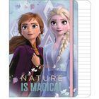Frozen 2: Caiet notițe cu glitter