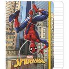 Spider-Man: Caiet notițe cu glitter