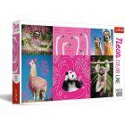 Trefl: Neon Color Line - Őrült háziállatok puzzle - 1000 darabos