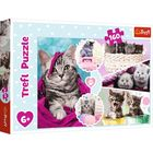 Trefl: Kedves cicák puzzle - 160 darabos
