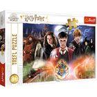 Trefl: Misteriosul Harry Potter - puzzle cu 300 de piese