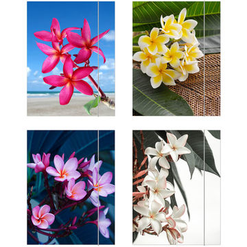 Flower gumis mappa - A4