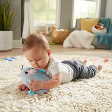 Fisher-Price: Figurină Morsă liniștitoare cu vibrații - .foto